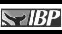 logo de Industrial Baja Pack
