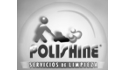 logo de Polishine